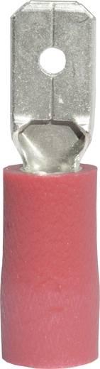 Flachstecker Steckbreite: 4.8 mm Steckdicke: 0.8 mm 180 ° Teilisoliert Rot Vogt Verbindungstechnik 392808S 1 St.