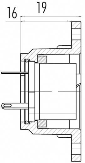 Standard-Rundsteckverbinder Serie 690 Pole: 3 Flanschdose 10 A 09-0058-00-03 Binder 1 St.