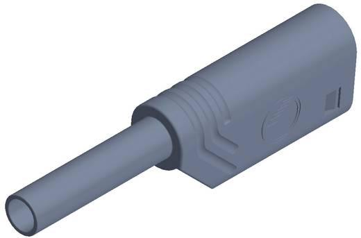 Laborstecker Stecker, gerade Stift-Ø: 2 mm Grau SKS Hirschmann MST S WS 30 Au 1 St.