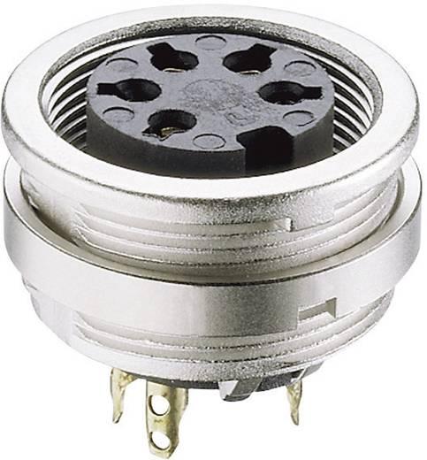 DIN-Rundsteckverbinder Buchse, Einbau vertikal Polzahl: 8 Silber Lumberg KFV 81 1 St.