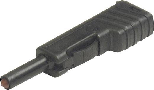 Laborstecker Stecker, gerade Stift-Ø: 4 mm Schwarz SKS Hirschmann SLS 200 1 St.