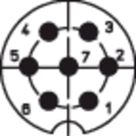 Lumberg LAS N WS Au DIN-Rundsteckverbinder Buchse, Einbau vertikal Polzahl: 7 Silber 1 St.