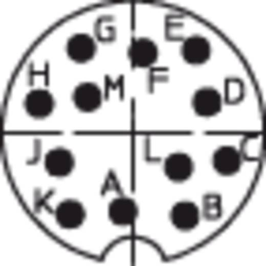 DIN-Rundsteckverbinder Stecker, Einbau vertikal Polzahl: 12 Silber Lumberg 0315 12 1 St.
