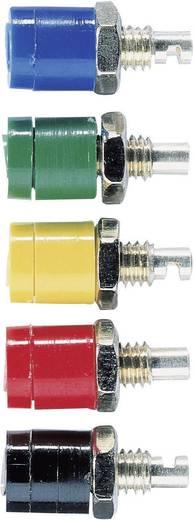 Miniatur-Laborbuchse Buchse, Einbau vertikal Stift-Ø: 2 mm Schwarz Schnepp BU 2400 1 St.