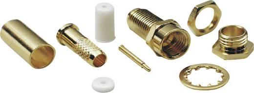 SMA-Reverse-Steckverbinder Buchse, gerade 50 Ω BKL Electronic 409084 1 St.