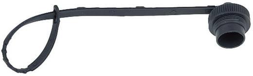 Rundstecker Schutzkappe Serie (Rundsteckverbinder): 423 08 1078 000 000 Binder 20 St.