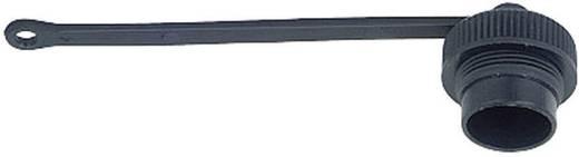 Rundstecker Schutzkappe Serie (Rundsteckverbinder): 423 08 1080 000 000 Binder 1 St.
