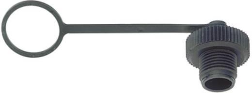Sensor-/Aktor-Steckverbinder, unkonfektioniert M12 Schutzkappe Polzahl: 4 Binder 08-2677-000-000 20 St.
