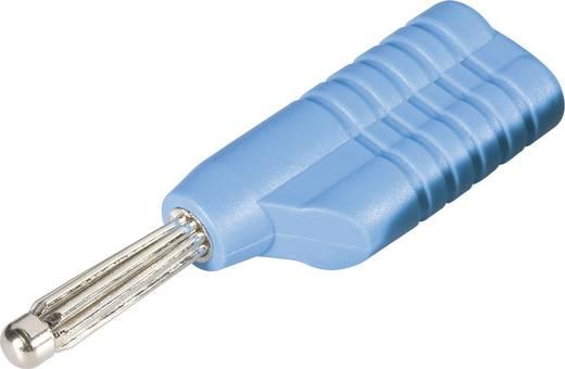 Büschelstecker Stecker, gerade Stift-Ø: 4 mm Blau Schnepp S 4041 S 1 St.