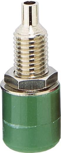 Laborbuchse Buchse, Einbau vertikal Stift-Ø: 4 mm Grün BKL Electronic 72309 1 St.