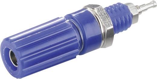 Polklemme Blau 10 A SCI R1-9 1 St.