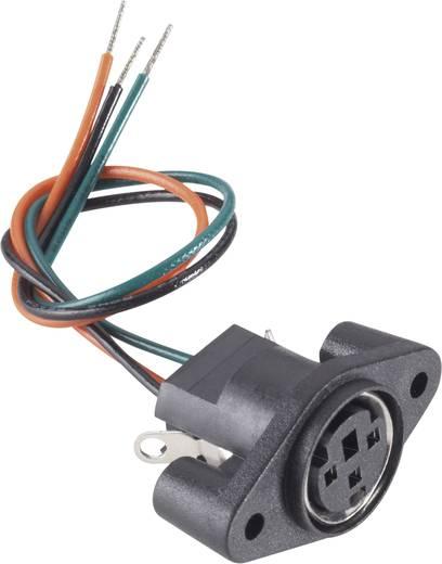 BKL Electronic 0204025 Miniatur-DIN-Rundsteckverbinder Buchse, Einbau vertikal Polzahl: 4 Schwarz 1 St.