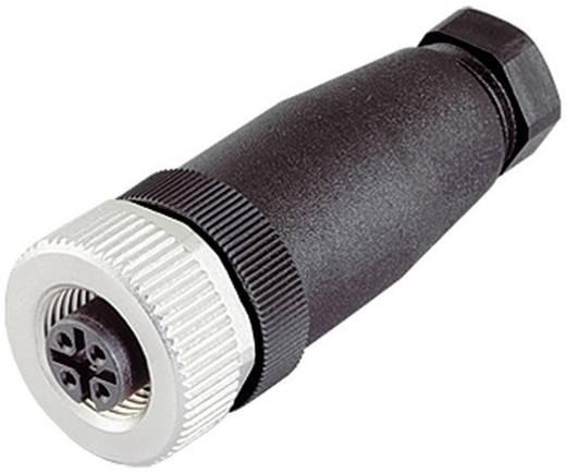 Binder 99-0436-14-05 Sensor-/Aktor-Steckverbinder, unkonfektioniert M12 Buchse, gerade Polzahl: 4 20 St.