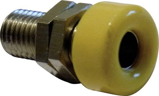 Laborbuchse Buchse, Einbau vertikal Stift-Ø: 4 mm Gelb Schnepp 1 St.