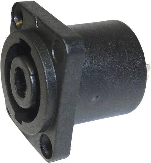 Lautsprecher-Steckverbinder Flanschbuchse, Kontakte gerade Polzahl: 4 Schwarz Cliff FM1270 1 St.