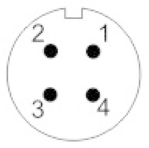 IP68-Steckverbinder Serie SP13 Pole: 4 Gerätestecker zur Frontmontage 5 A SP1312 / P 4 Weipu 1 St.