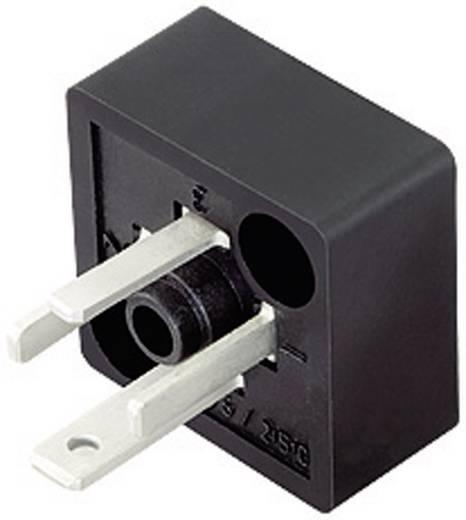 Magnetventilsteckverbinder Bauform C Serie 230 Schwarz 43-1907-000-04 Pole:3+PE Binder Inhalt: 1 St.