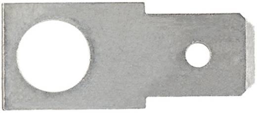 Steckzunge Steckbreite: 6.3 mm Steckdicke: 0.8 mm 180 ° Unisoliert Metall Klauke 2140 1 St.
