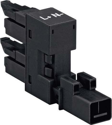 Netz-H-Verteiler Netz-Stecker - Netz-Buchse, Netz-Buchse Gesamtpolzahl: 2 Weiß WAGO 890-1686 1 St.