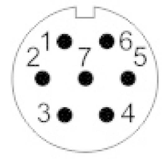 Weipu SP1312 / P 7 Rundstecker Stecker, Einbau Serie (Rundsteckverbinder): SP13 Gesamtpolzahl: 7 1 St.