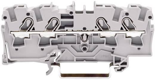 Schutzleiterklemme 6.20 mm Zugfeder Belegung: PE Grün-Gelb WAGO 2004-1407 1 St.