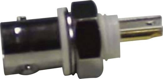 BNC-Steckverbinder Buchse, Einbau vertikal 50 Ω Conrad Components 1 St.