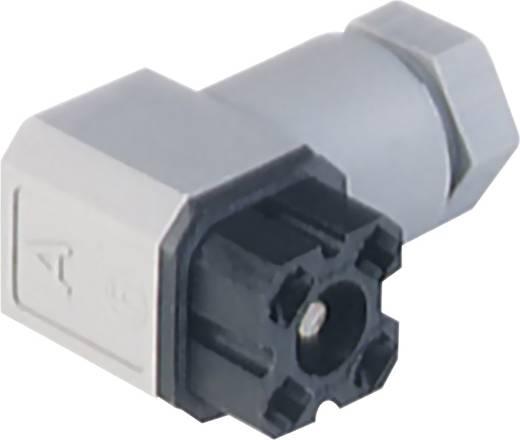 Steckverbinder für Netzspannung G-Serie Schwarz G 30 W 3 F schwarz/black Pole:3 + PE Hirschmann Inhalt: 1 St.