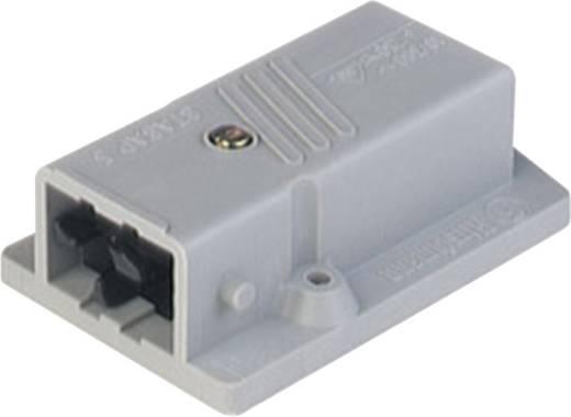 Netz-Steckverbinder Serie (Netzsteckverbinder) STASAP Gesamtpolzahl: 5 + PE 6 A Hirschmann STASAP 5 1 St.