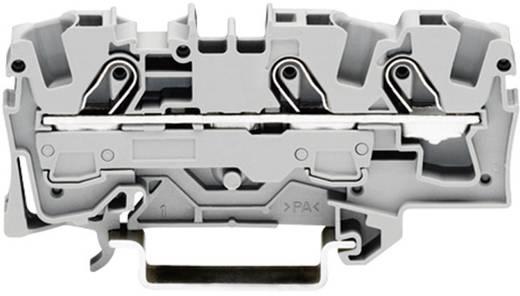 Schutzleiterklemme 7.50 mm Zugfeder Belegung: PE Grün-Gelb WAGO 2006-1307 1 St.