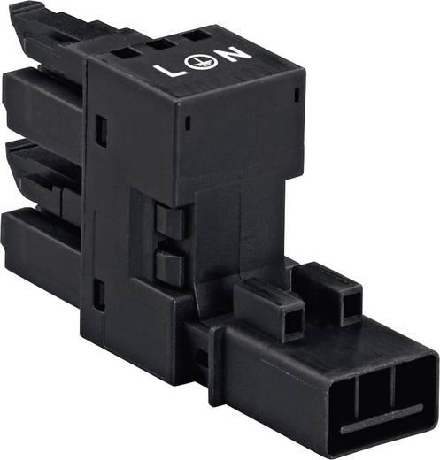 Netz-H-Verteiler Netz-Stecker - Netz-Buchse, Netz-Buchse Gesamtpolzahl: 2 + PE Schwarz WAGO 890-636 1 St.