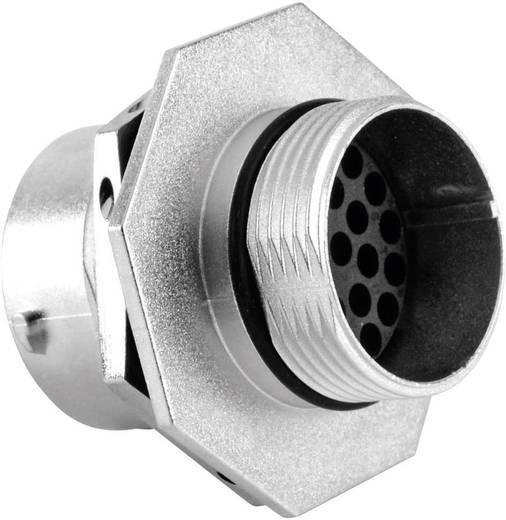 Gerätedose - Serie RT360™ Nennstrom (Details): 5 A Pole: 26 RT0716-26SNH Amphenol