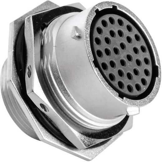 Gerätedose - Serie RT360™ Nennstrom (Details): 5 A Pole: 32 RT0718-32SNH Amphenol