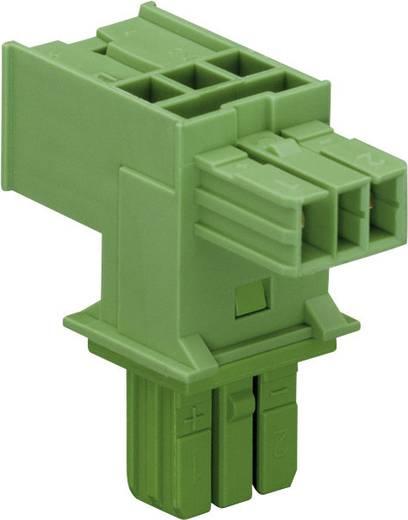 Netz-T-Verteiler Netz-Stecker - Netz-Buchse, Netz-Buchse Gesamtpolzahl: 2 Grün WAGO 1 St.