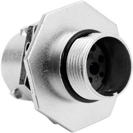 Amphenol RT0712-3SNH Rundstecker Buchse, Einbau Serie (Rundsteckverbinder): RT360™ Gesamtpolzahl: 3 1 St.