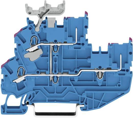 Doppelstock-Basisklemme 5.20 mm Zugfeder Belegung: N, N Blau WAGO 2022-2204 1 St.
