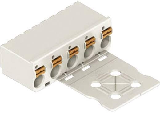 Federleiste Polzahl Gesamt 10Anzahl Reihen 1 Industrieware Nein Inhalt 1 St. Licht-Grau WAGO