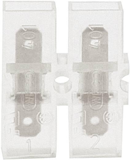Steckzunge Steckbreite: 4.8 mm Steckdicke: 0.8 mm 180 ° Vollisoliert Transparent Klauke 8052 1 St.