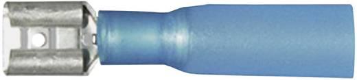 Flachsteckhülse mit Schrumpfschlauch Steckbreite: 6.3 mm Steckdicke: 0.8 mm 180 ° Teilisoliert Blau Vogt Verbindungstech