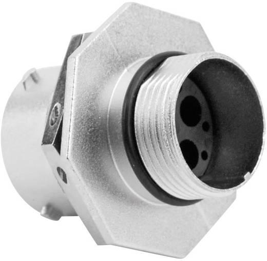 Gerätedose - Serie RT360™ Nennstrom (Details): 23 A / 13 A Pole: 4 RT0714-4SNH Amphenol