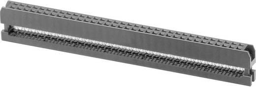 Buchsenleiste Rastermaß: 2 mm Polzahl Gesamt: 50 W & P Products 1 St.