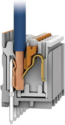 picoMAX® eCOM® Steckverbindersystem Polzahl Gesamt 2Anzahl Reihen 1 Industrieware Ja Inhalt 1 St. Licht-Grau WAGO