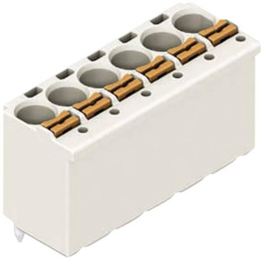WAGO Buchsenleiste (Standard) 2091 Polzahl Gesamt 4 Rastermaß: 3.50 mm 2091-1174 1 St.