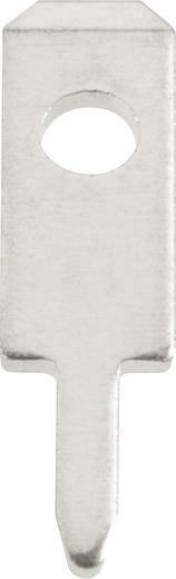 Steckzunge Steckbreite: 2.8 mm Steckdicke: 0.5 mm 180 ° Unisoliert Metall Vogt Verbindungstechnik 378005.68 100 St.