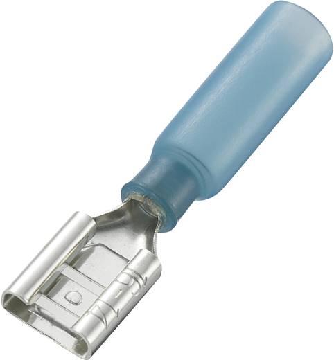 Flachsteckhülse mit Schrumpfschlauch Steckbreite: 8 mm Steckdicke: 0.8 mm 180 ° Teilisoliert Blau Conrad Components 9301