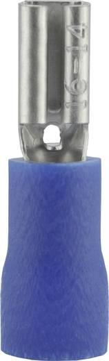 Flachsteckhülse Steckbreite: 2.8 mm Steckdicke: 0.5 mm 180 ° Teilisoliert Blau Vogt Verbindungstechnik 389905S 1 St.