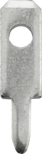 Steckzunge Steckbreite: 2.8 mm Steckdicke: 0.8 mm 180 ° Unisoliert Metall Vogt Verbindungstechnik 378008,68 100 St.