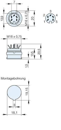 DIN-Rundsteckverbinder Buchse, Einbau vertikal Polzahl: 4 Grau Hirschmann MAB 4100 1 St.