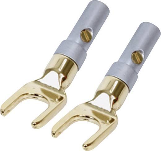 Lautsprecher-Steckverbinder Stecker, gewinkelt Polzahl: 1 Schwarz Kash 2 St.