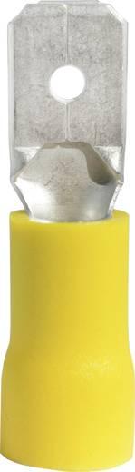 Flachstecker Steckbreite: 6.3 mm Steckdicke: 0.8 mm 180 ° Teilisoliert Gelb Vogt Verbindungstechnik 3912S 1 St.