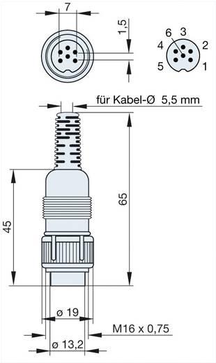 DIN-Rundsteckverbinder Stecker, gerade Polzahl: 6 Grau Hirschmann MAS 6100 1 St.